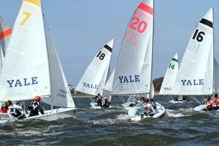 rsz_mansoor_sailing-230-630x420