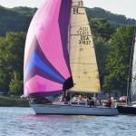 Bayshore summer 2 Pink